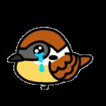 すずめの涙