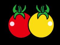 赤と黄色のミニトマト