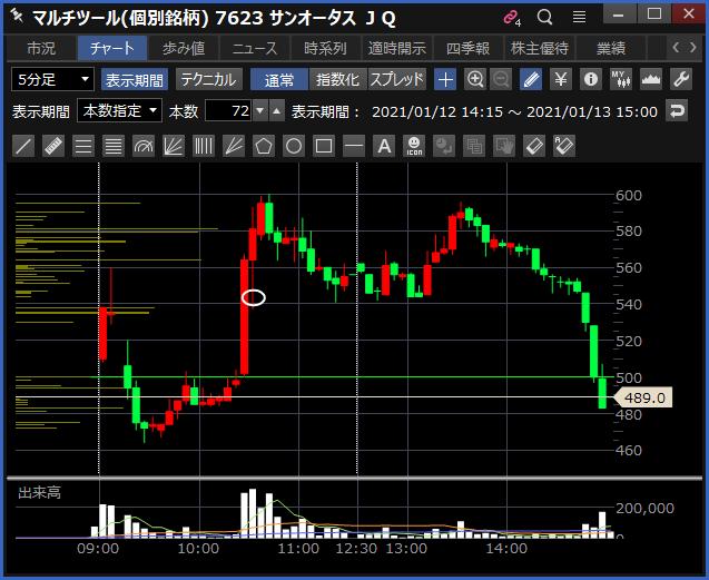 2021-01-13 サンオータス チャート